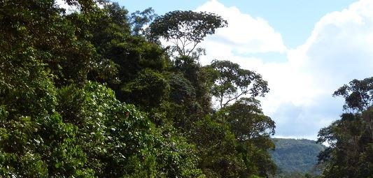 KLR au Venezuela 13