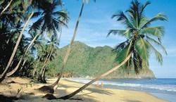 playa grande de Choroni au Venezuela
